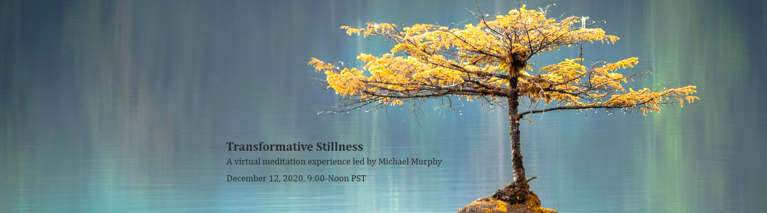 Transformative Stillness